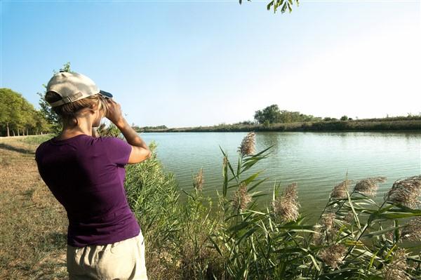 Verde Birdwatching Delta del Po