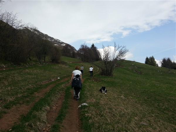camminare col cane a comanojpg