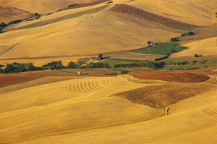 Colline Pisane - Pisan Hills