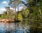 Ritten_Wolfsgrubener_See_© Associazione turistica Renon_Foto_Achim_Meurer (2)