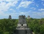 guatemala-tikal-piramidi-scorcio