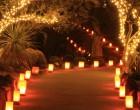 mercatini-natale-candele-a-candelara-hp