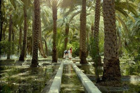 al-ain-oasis-0013