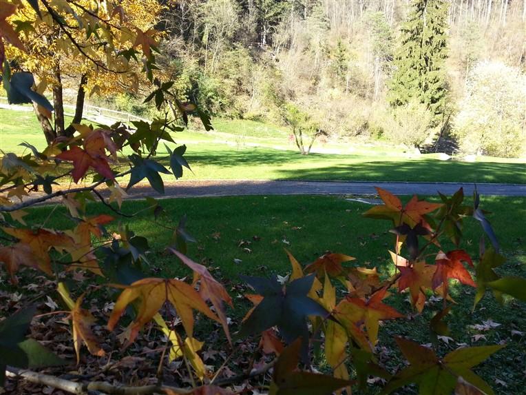 parco termale comano autunno 2