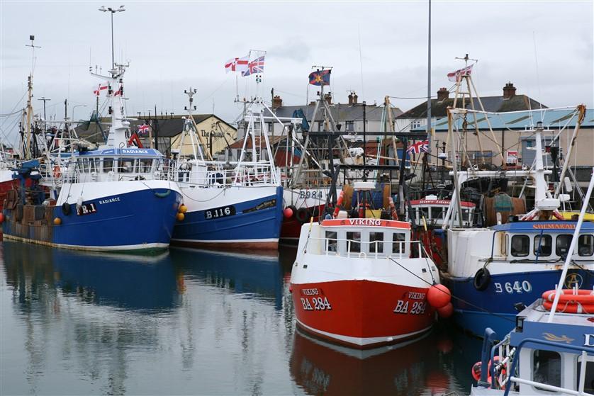 irlanda porto pescatori