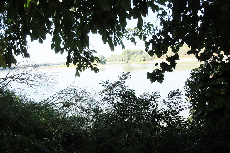 MANTOVANO RIVA PO IMG_3344