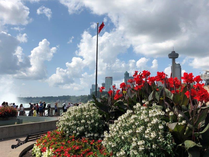 Niagara (4)