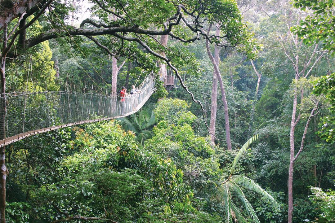 Malesia: il Paese della sostenibilità