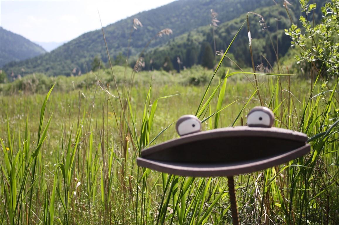 Terme di Comano, una vacanza d'avventura e di favole: si dorme sotto le stelle in un maso col tetto di paglia, si cammina tra le fiabe che si animano, ci si scopre contadino in fattoria