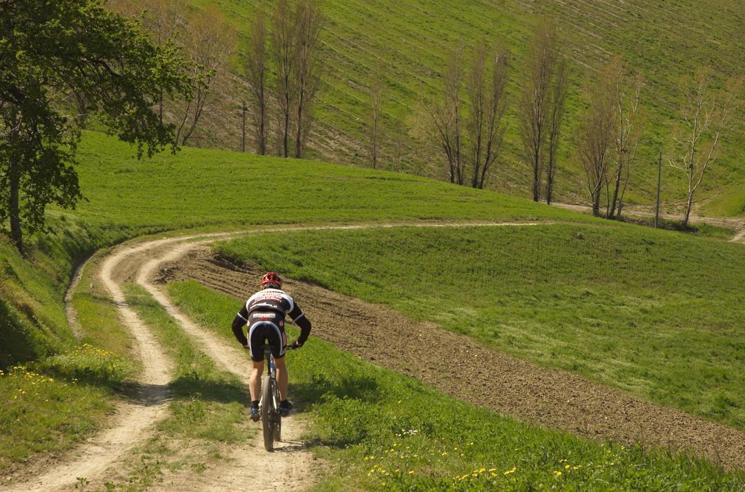 Emilia Romagna, vocazione vacanze